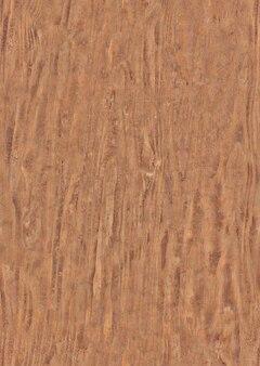 Corteza de madera marrón con fondo de textura natural o textura