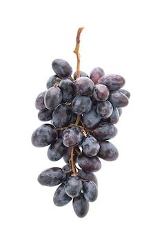 La cosecha de fruta natural vid sana