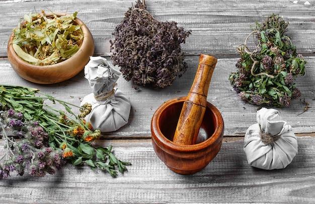 Cosecha de hierbas medicinales y plantas.