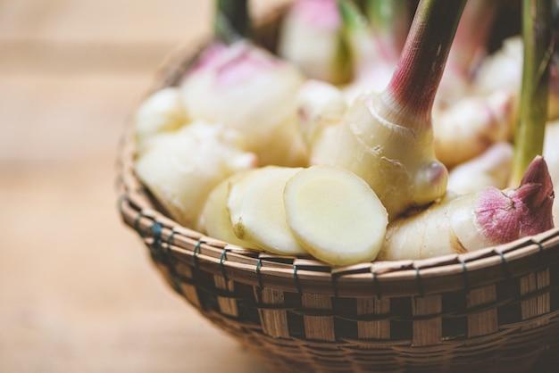 Cosecha de raíz de jengibre en la canasta / jengibre joven fresco para hierbas medicinales naturales y alimentos
