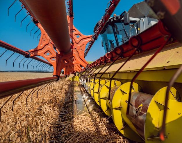 Cosechadora en acción en campo de trigo
