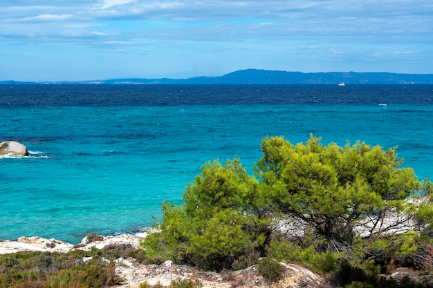 Costa del mar egeo con vegetación alrededor, rocas, arbustos y árboles, agua azul con olas, grecia