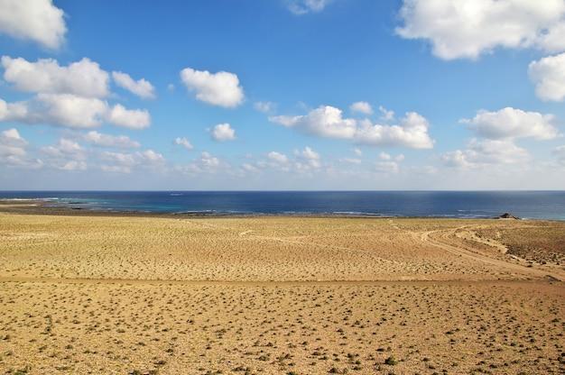 La costa del océano índico, la isla de socotra, yemen