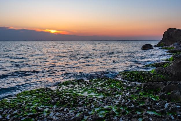 Costa rocosa con algas verdes al amanecer.