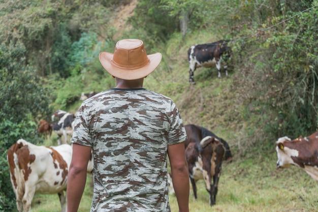 Cowman cuidando a sus vacas al aire libre
