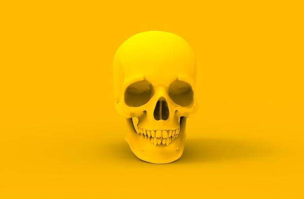 Cráneo humano amarillo sobre fondo blanco.