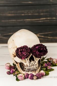 Cráneo humano con rosas en las cuencas de los ojos