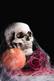 Cráneo humano con rosas y telaraña