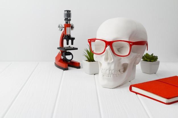 Cráneo humano de yeso en vasos rojos con bloc de notas, microscopio y plantas en la mesa de madera blanca