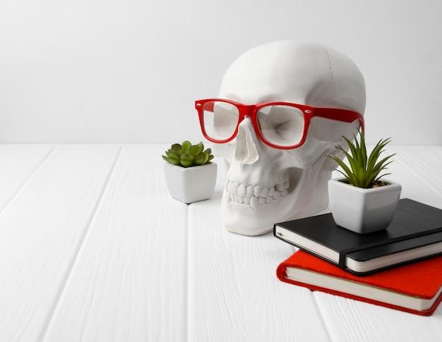 Cráneo humano de yeso en vasos rojos con blocs de notas y plantas en la mesa de madera blanca.