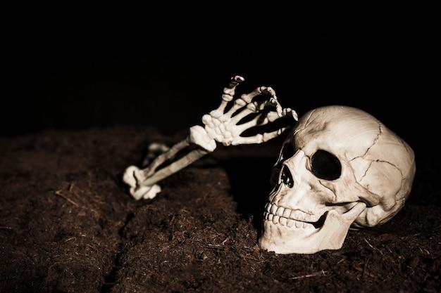 Cráneo y mano de esqueleto en el suelo