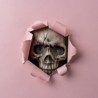 Cráneo mirando a través de papel rasgado rosa
