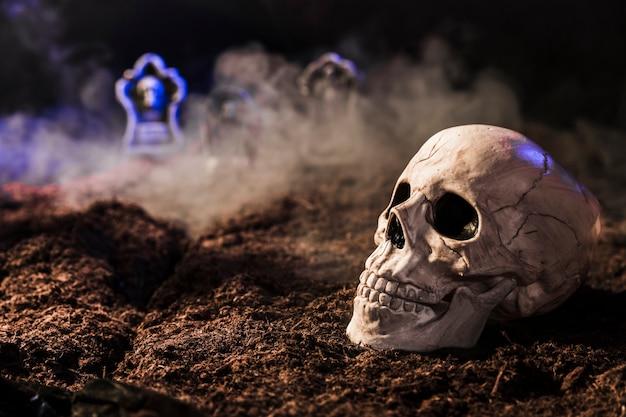 Cráneo entre niebla en el suelo