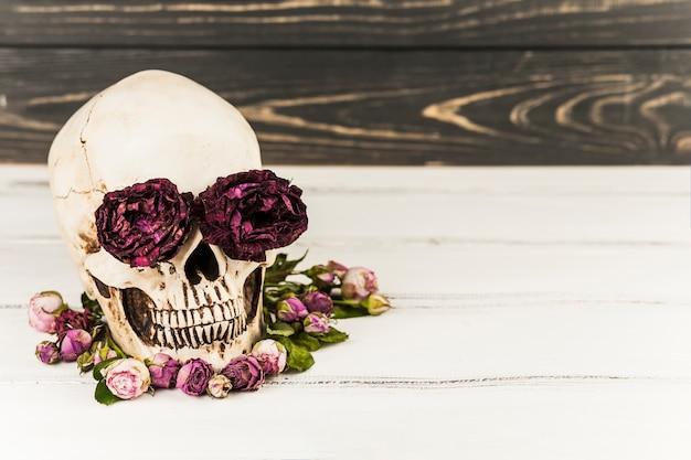 Cráneo con rosas en las cuencas de los ojos