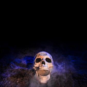 Cráneo sombrío colocado en el suelo