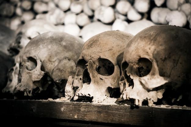Cráneos y huesos humanos. foto sombría. muerte