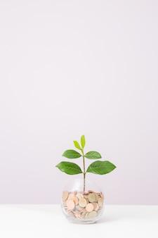 Crecimiento hasta de concepto de negocio