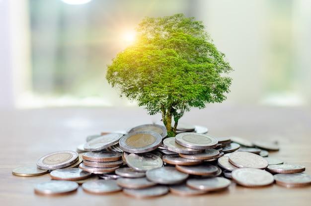 Crecimiento de dinero ahorrar dinero