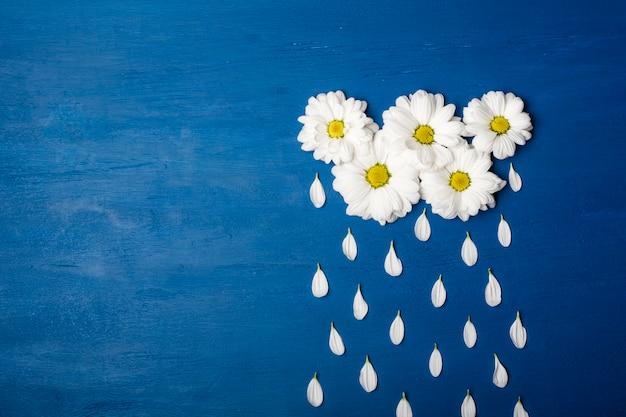 Crisantemos blancos en forma de nubes y pétalos de gotas de lluvia. fondo de primavera o verano con espacio para copiar texto