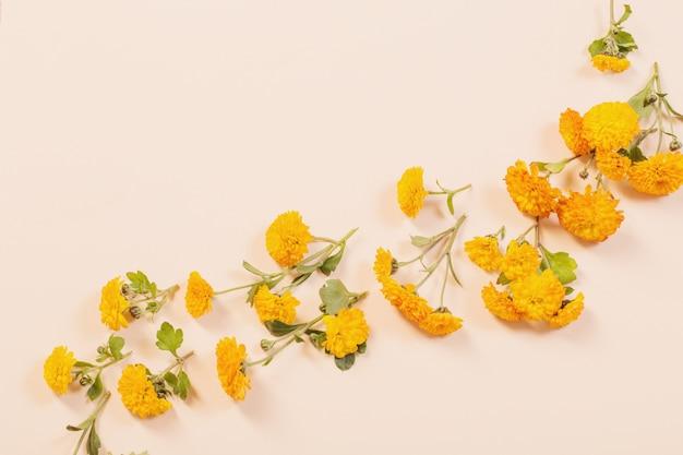 Crisantemos naranjas sobre papel amarillo