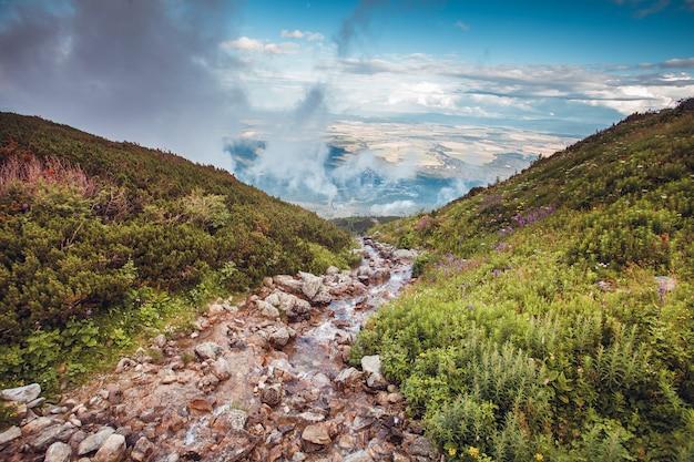 Crystal creek en las montañas del alto tatra