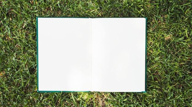 Cuaderno abierto colocado sobre la hierba verde.