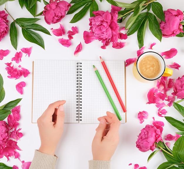 Cuaderno abierto en una jaula y dos manos femeninas, una taza amarilla con café sobre un fondo blanco.