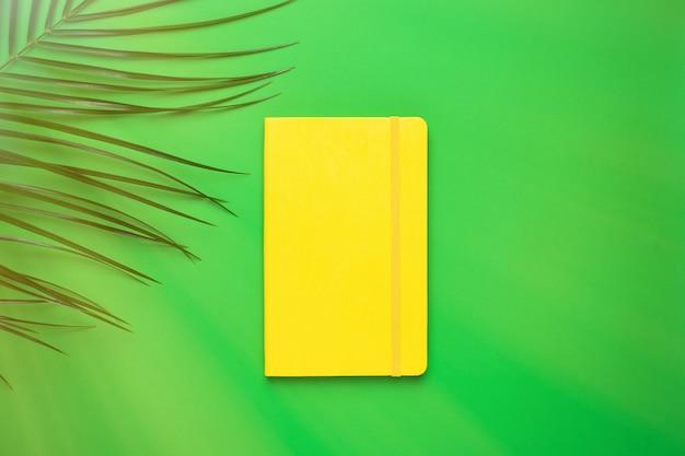 Cuaderno amarillo y planta tropical con luz solar en verde.