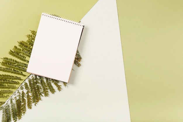 Cuaderno sobre ramita de helecho