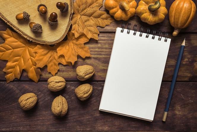 Cuaderno y nueces en la hermosa composición de otoño