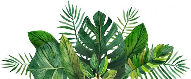 Cuadro acuarela de hojas tropicales.