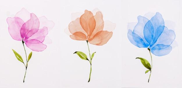 Cuadro color agua, dibujo a mano, flores rosa, naranja, azul.
