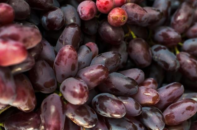 Cuadro completo de uvas rojas.