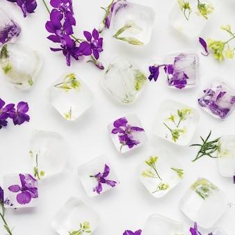 Cubitos de hielo claro con plantas y flores.