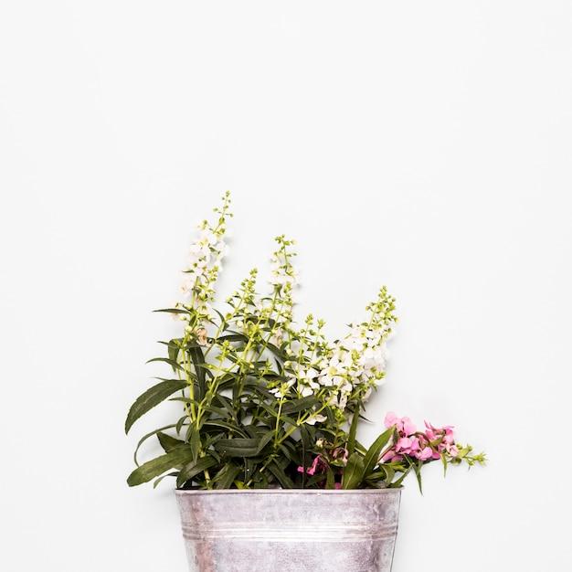 Cubo con flores blancas y rosas.