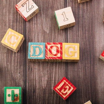 Cubos de madera con inscripción de perro.