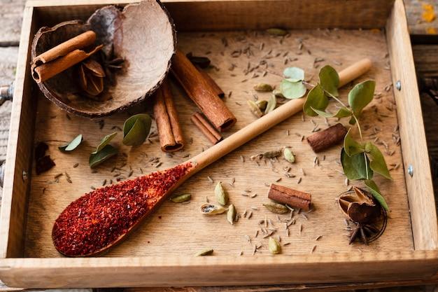 Cuchara con especias tradicionales indias