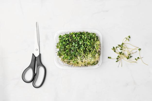 Cuenco de microgreens en pared de mármol blanco. concepto de superalimento.