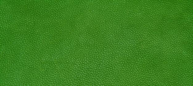 Cuero textura verde