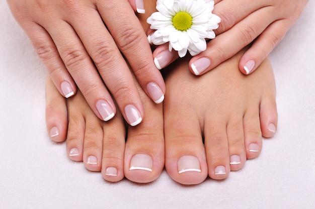 Cuidado de la piel de una belleza de pies femeninos con flor de manzanilla