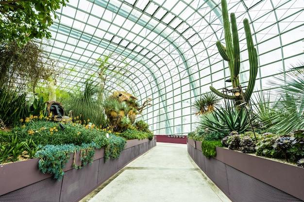 Cúpula de flores jardín y bosque de invernadero para viajar.