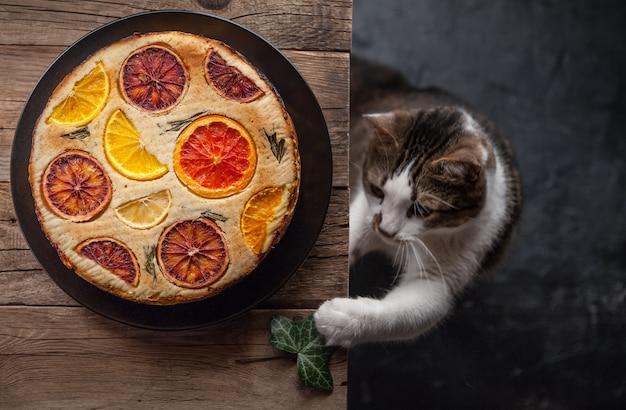 Curioso gato juguetón cerca de pasteles de cítricos en estilo rústico