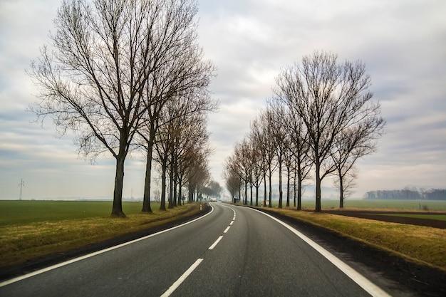 Curva de dos carriles country road sinuoso a través de los árboles.