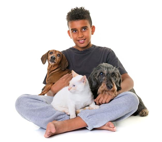 Dachshunds, gatito y niño