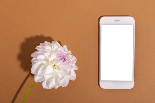 Dalia ternura blanca y teléfono móvil con pantalla en blanco primer plano suave fondo floral
