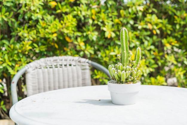 Decoración de cactus en mesa