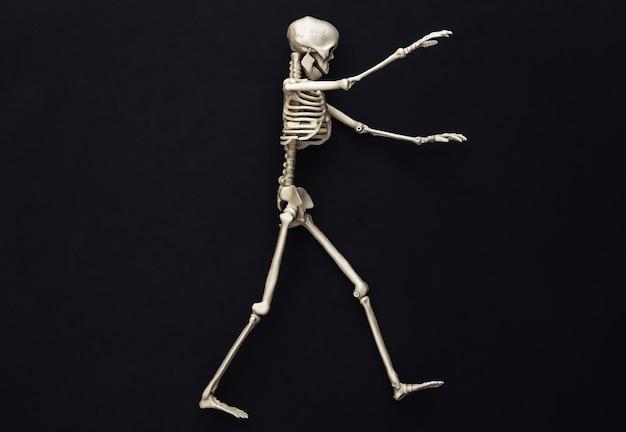 Decoración de halloween, tema de miedo. caminando esqueleto falso sobre un negro.
