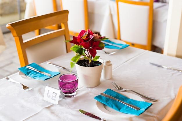 Decoración de macetas de flores en la mesa, en el interior