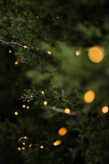 Decoración navideña con hermosos árboles y luces