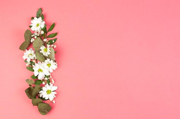 Decoración realizada con flores de margarita blanca y hojas sobre fondo melocotón.